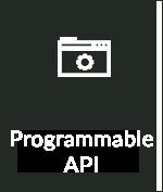 Programmable API